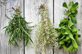 All Wholesome Herbs